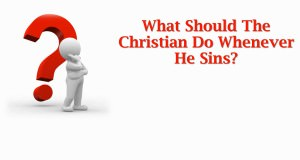 What_Should_The_Christian_Do_Whenever_He_Sins_TItle_Pic